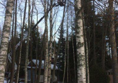 mtalkkari puiden kaato nostimen avulla